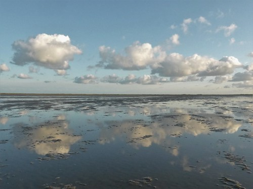 Serenity of low tide at the Boschplaat Terschelling | by Alta alatis patent