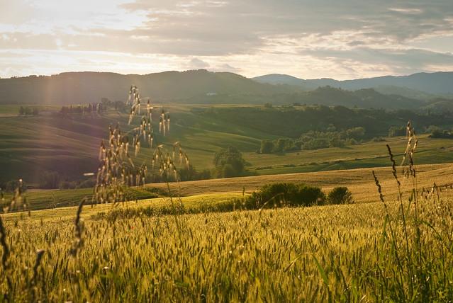 2010-05 GABBIANO, SCARPERIA, ITALY