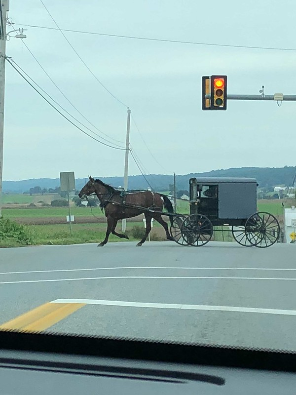 The Amish around town Strasburg in Pennsylvania