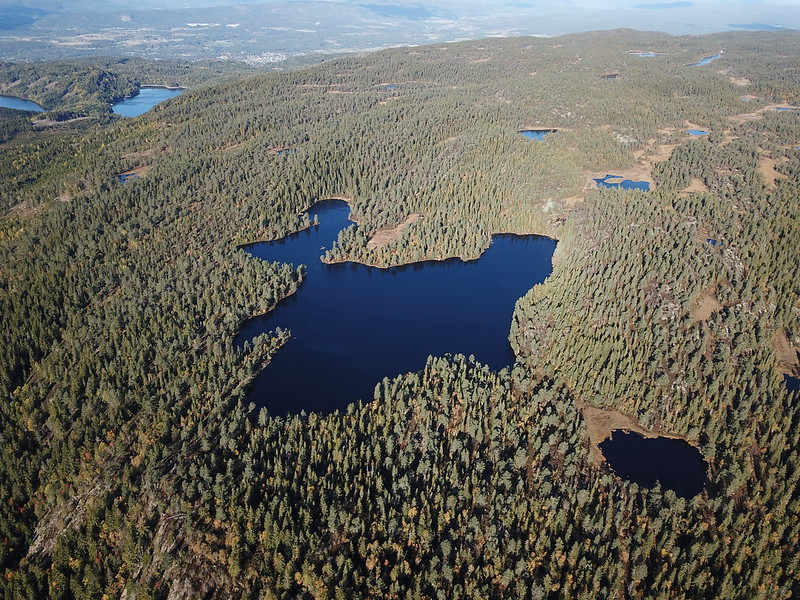 17-Flagervann (drone)