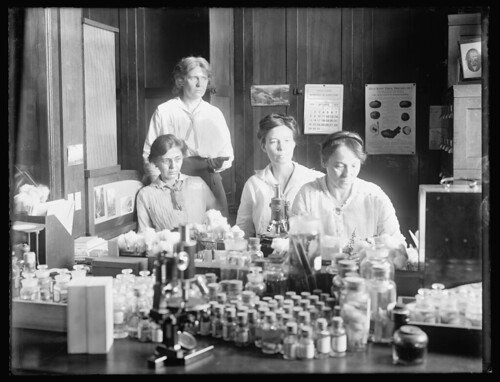 Women scientists: standing: Miss Nellie A. Brown; L to R: Miss Lucia McCollock, Miss Mary K. Bryan, Miss Florence Hedges, The women scientists make cultures of the parasites, ca. 1910-20 | by pingnews.com