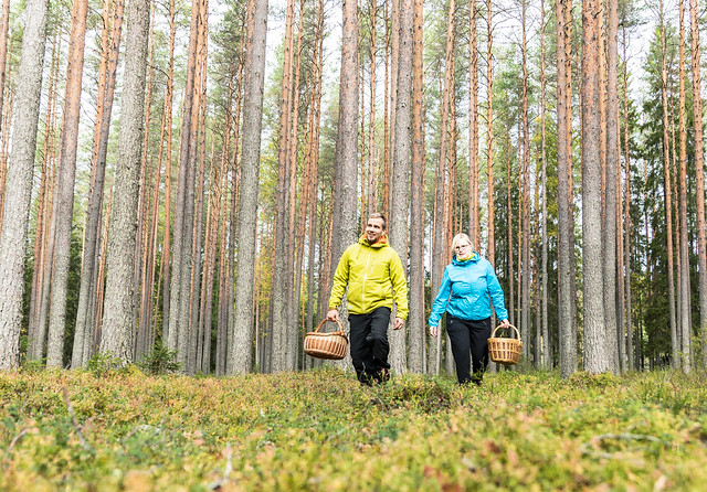 man and a woman walking in forest