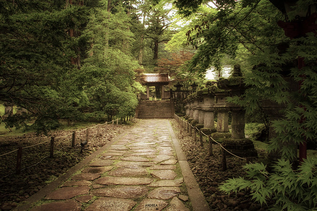 Tōshō-gū Shrine, Stone Lanterns Pathway - Nikkō (Japan)