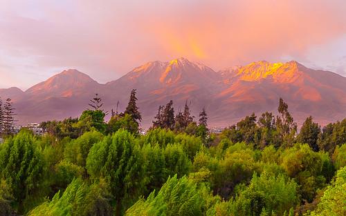 misti volcano arequipa nature landscape trees peru perú southamerica travelphotography travelphotographer pinksky beautifulsky goldenhour peaks snowcap