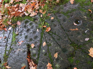 Cup and Ring Marks