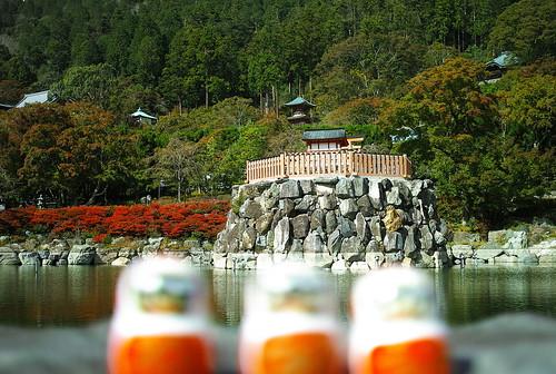 勝尾寺   by taoweblog