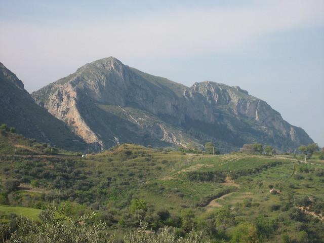 Monte COnsolino!