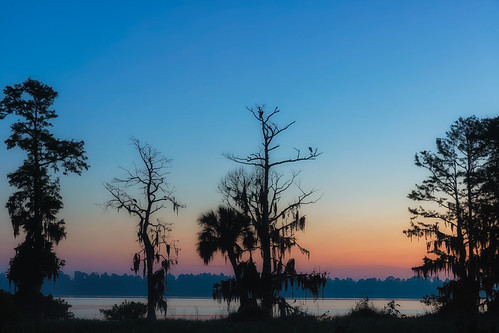 circlebbarreserve florida lakeland natureparks sunrise unitedstates us
