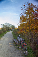 Bedford - Sackville Greenway - Autumn