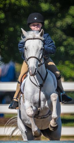 nx500 samsungnx500 equestrian opteka500mmf63 choiceshot2018