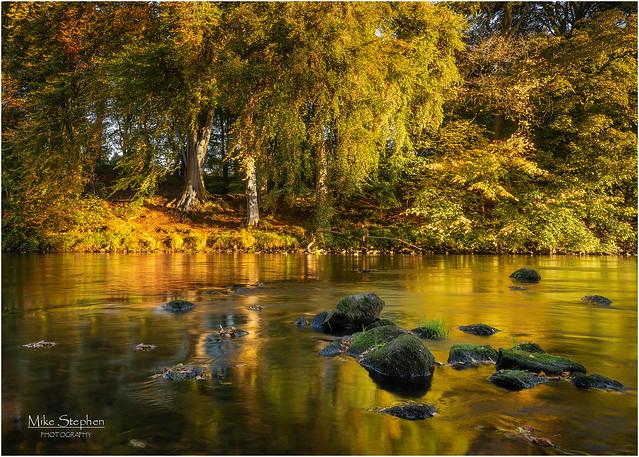 Autumn, River Don