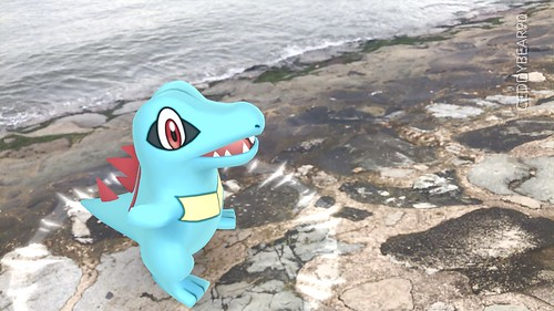 158 Totodile (position=left)