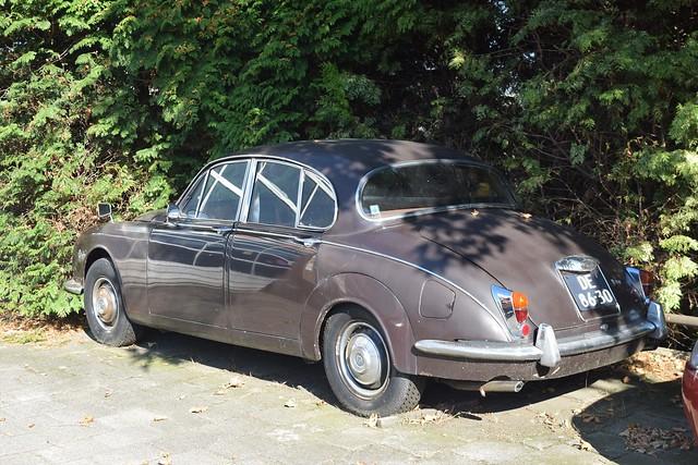 Daimler V8 250 1964
