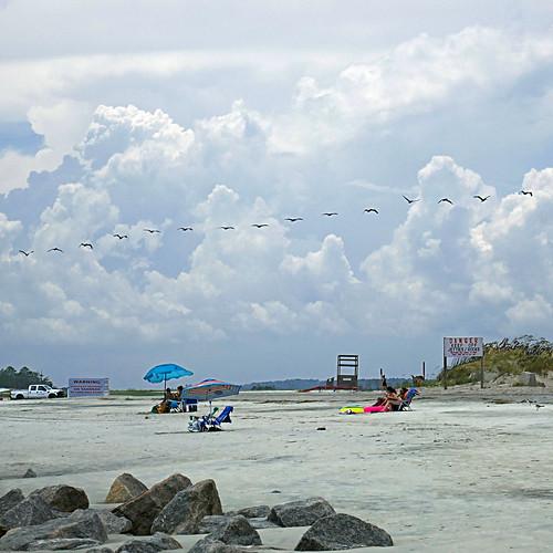 panasonicdmctz101 july 2018 america northamerica usa unitedstatesofamerica georgia savannah tybeeisland tybeeislandbeach 100 200 birds pelicans beach clouds sky 300 americanwayoflife