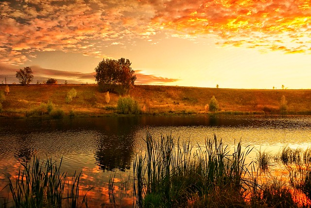 Autumn. Sunrise.