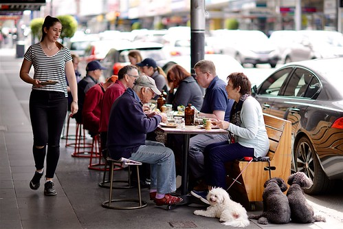 Sunday brunch with the dogs, Malvern | by Joe Lewit