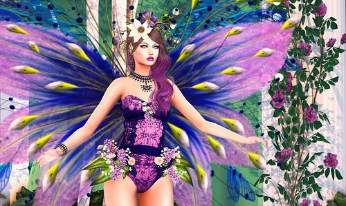 TFA Enchanted Angels - Anael Starr