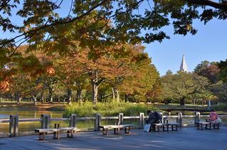Yoyogi Park | by jpellgen (@1179_jp)