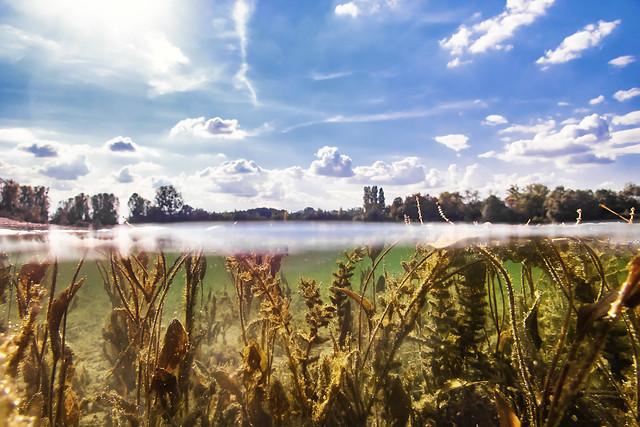 Lake cross-section...