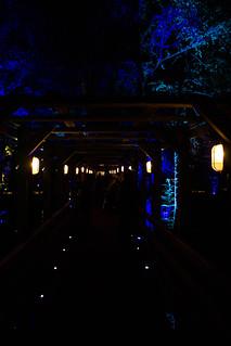 tunnel | by geekyjj
