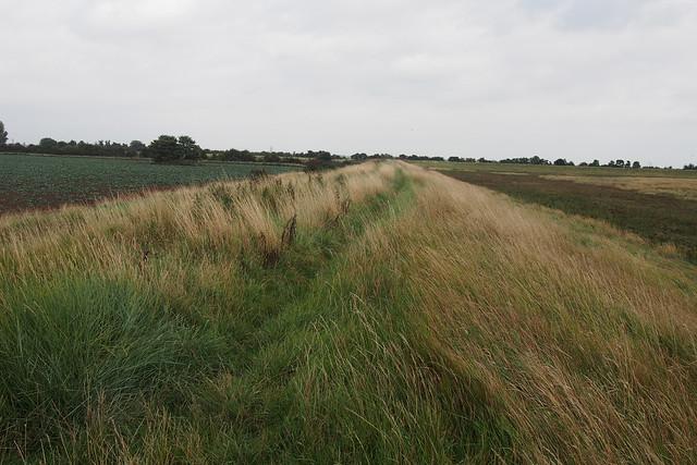 Path near Wrangle