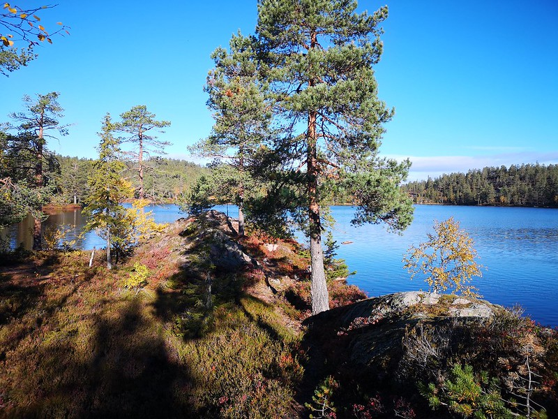 07-Flagervann