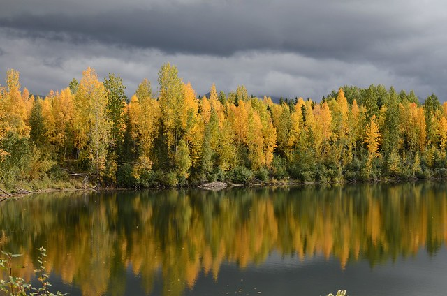 Fall Colors at University Lake