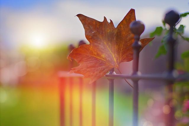 Gateway to Autumn...
