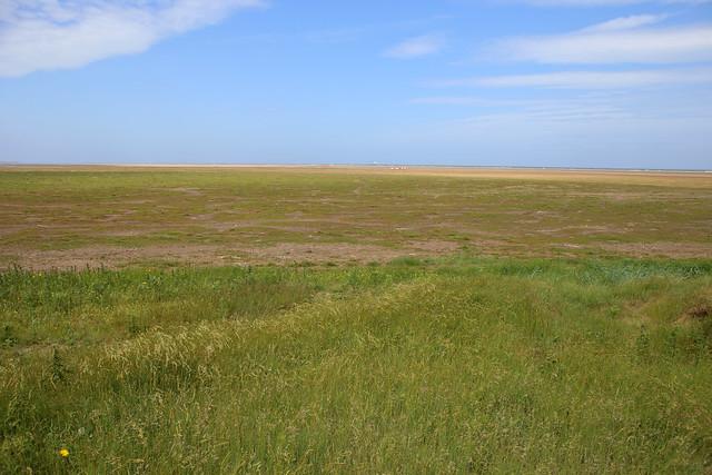 Donna Nook National Nature Reserve