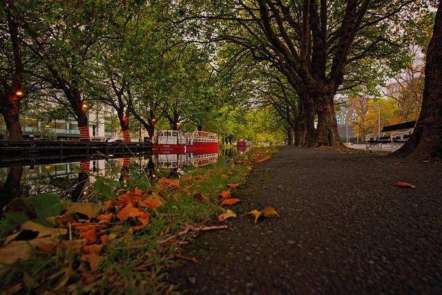 The Grand Canal, Dublin