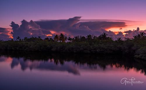 fujifilm fuji gfx50s fujigfx50s gf3264mmf4rlmwr mediumformat scenic landscape waterscape nature outdoors sky clouds colors reflections sunrise tropical island palmtrees mangroves stuart florida southeastflorida treasurecoast