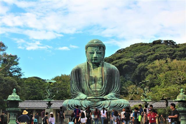 kotokuin-daibutsu003