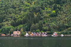 Typical fjord houses
