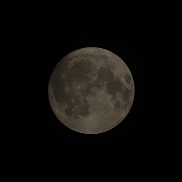 中秋の名月 雲の中( The harvest moon in clouds. )