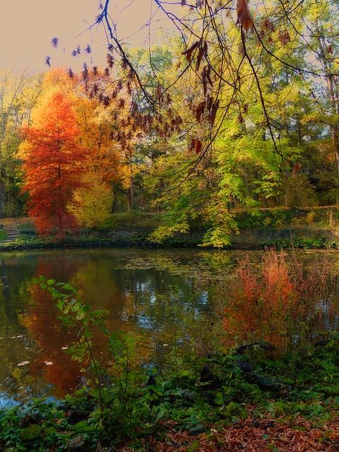 Herbst ist bunt und schön
