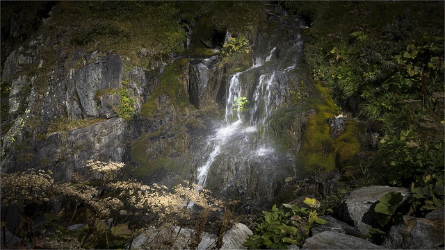 _DSC8682 Nature at the Furkapass / Switzerland