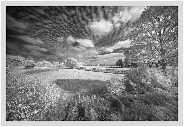 Laowa 10-18mm f/4.5-5.6 FE Zoom @ 10mm prototype on Sony A7R infrared