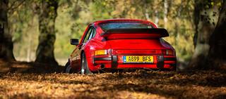 Porsche 911 3.2 Carrera Sport at Clumber Park - 25/10/2018 | by kevaruka