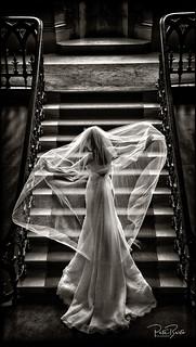 Beautiful Bridal back light