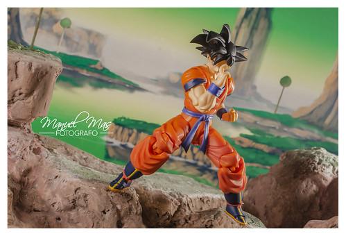 S.H.Figuarts - Son Goku (A Saiyan raised on Earth) | by manumasfotografo