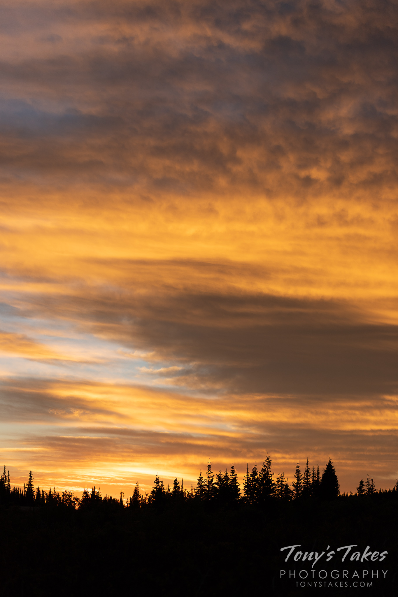 Sunrise illuminates the mountain clouds in orange. (© Tony's Takes)