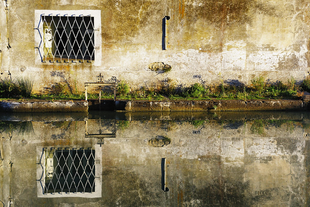 Reflets // Reflection