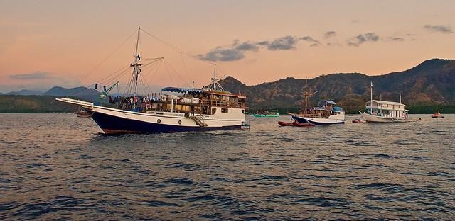 Rinca island boat tours