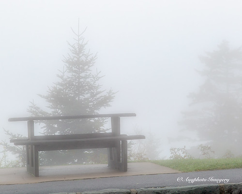 augphotoimagery blueridgeparkway fog foggy haze mist misty muted nature outdoors picnictable trees maggievalley northcarolina unitedstates
