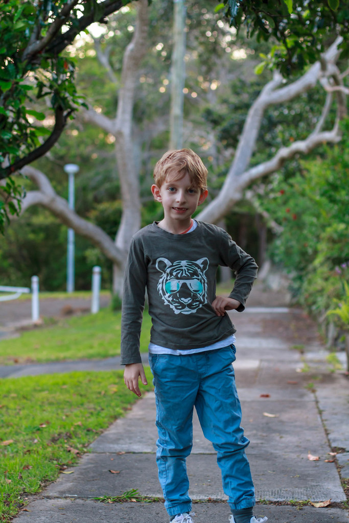 Walk in Roseville, Sydney, NSW, Australia