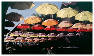 Umbrellas, Port Louis, Mauritius | by joaofreitas