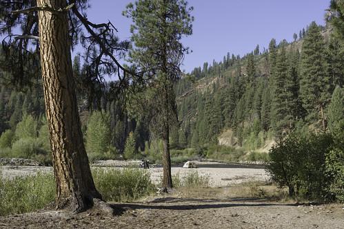 Sandbar   by Trail Image