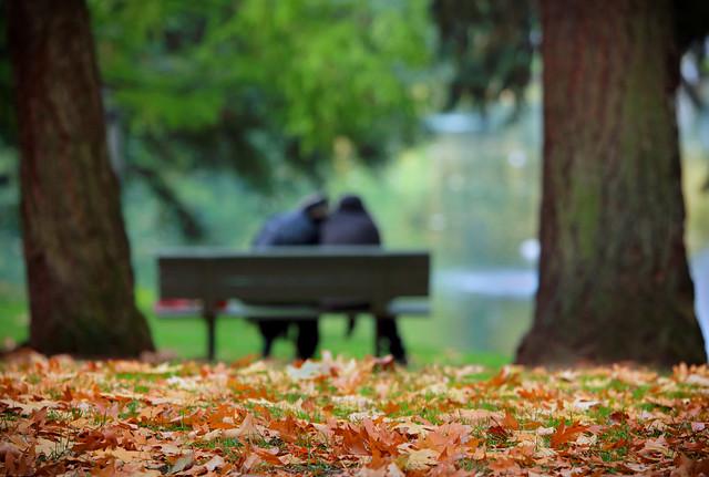 An Autumn Romance