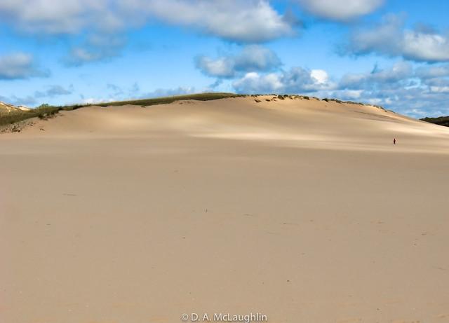 Dune Solitude