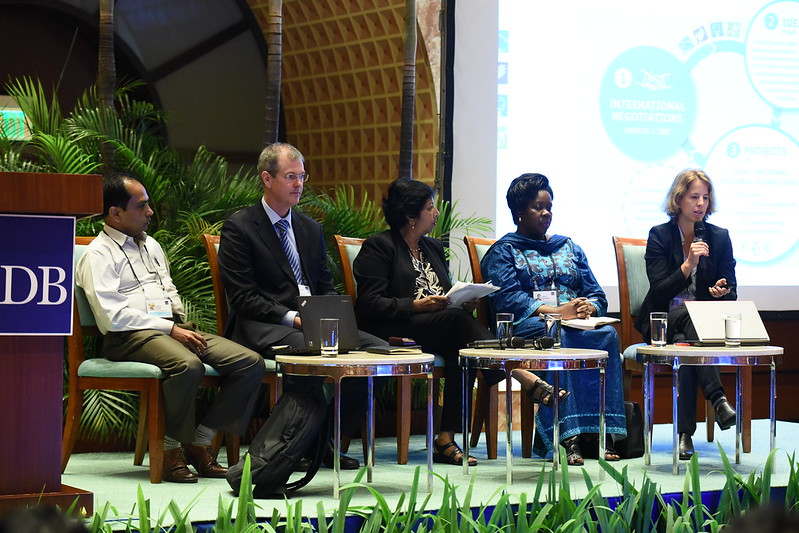 Attracting Investments for Nature-Based Solutions - Panel